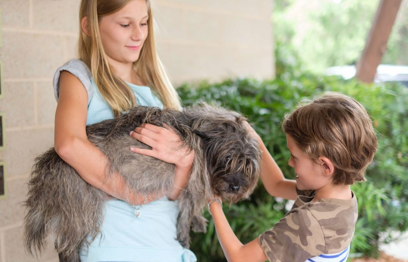 girl holding dog with microchip